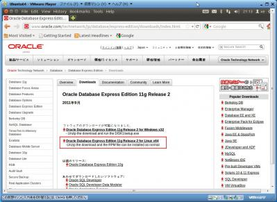 OracleDatabaseExpressEdition11gR2